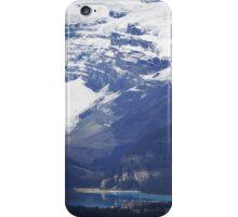 Splendor and Scale iPhone Case/Skin