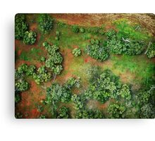 the gift of flight Canvas Print