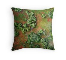 the gift of flight Throw Pillow
