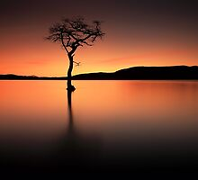 Loch Lomond Afterglow by Grant Glendinning