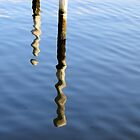 Reflection of the poles by henuly1
