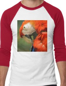Red Parrot, the Scarlet Macaw – portrait Men's Baseball ¾ T-Shirt