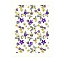 Pansies and Daisies Art Print