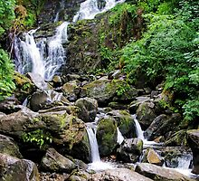 Torc Waterfall in Summer by TonyCrehan
