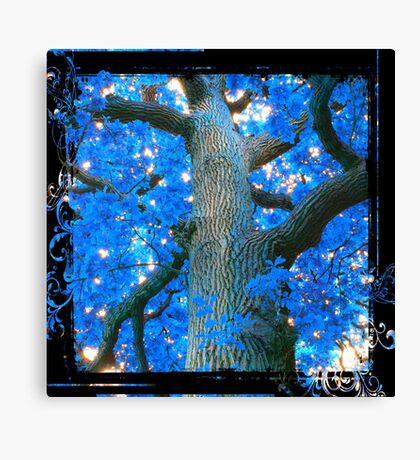Blue Oak Tree Canvas Print