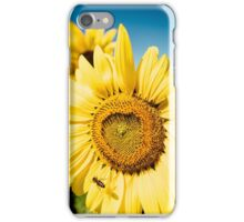 Bumble Bee & Sunflower iPhone Case/Skin