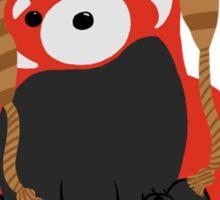 Collin the Beanie-Wearing Red Panda Sticker