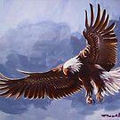 Eagle by Dan Wilcox