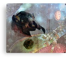 Across Space and Time Canvas Print