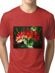 Three Amigos Tri-blend T-Shirt