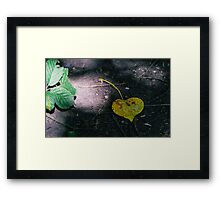 Decaying Love Framed Print