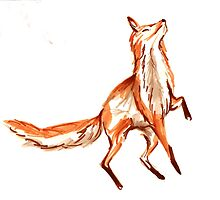 Leaping fox by IldiCoco