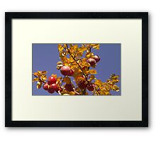 This Could Be The Last Time Framed Print