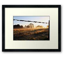 Web... Framed Print