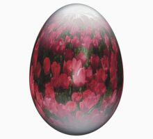easter egg tulips by Jicha