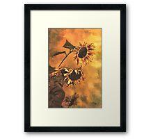 Agony And Ecstasy - Sunflower Story Framed Print