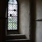 Sunlight in the Crypt by Tracy Duckett