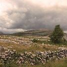 The wild Burren National Park by miradorpictures