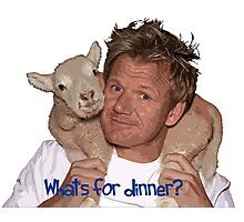 Whats for Dinner Chef Gordon Ramsay Photographic Print
