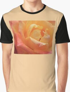 ROSE MACRO - RED TO GOLD Graphic T-Shirt