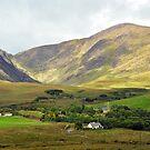 Countryside near Sneem - Ireland by Arie Koene