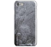 Carolina Powder iPhone Case/Skin