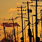 Electric Sunset by Gilda Axelrod