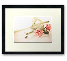 Origanum Flower Framed Print