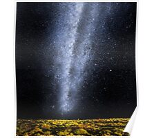 Milking the Sky - The Milky Way Poster