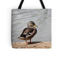 ducks on lake Tote Bag
