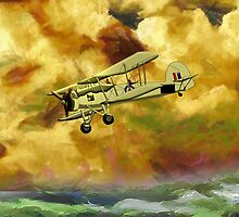 WWII Swordfish biplane of the Royal Navy - pillow & tote design by Dennis Melling