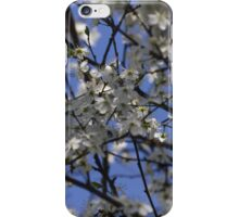 white flowers in spring iPhone Case/Skin