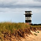 Gooseberry Island Observation Tower by Poete100