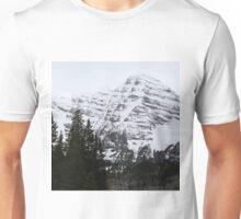Snowy Striations Unisex T-Shirt