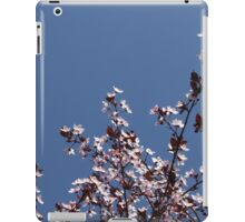 peach blossom in spring iPad Case/Skin