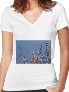 peach blossom in spring Women's Fitted V-Neck T-Shirt