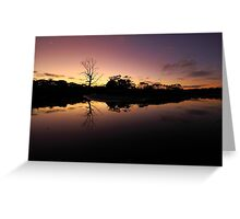 Peggs Creek , North West Tasmania , Australia Greeting Card