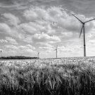 Wind Turbines by 242Digital