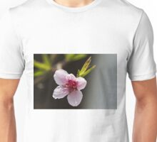 peach blossom in spring Unisex T-Shirt