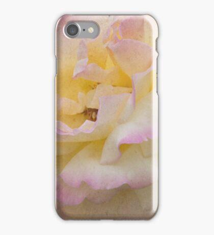 Rose of Summer iPhone Case/Skin