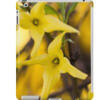 yellow flowers in spring iPad Case/Skin