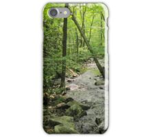 a Flowing River Through a Forest iPhone Case/Skin
