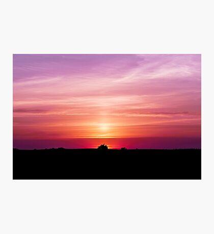 Violet Summer Sunrise Photographic Print