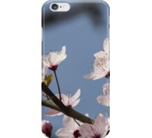 peach blossom in spring iPhone Case/Skin