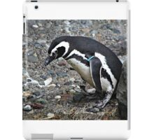Penguin 2 iPad Case/Skin