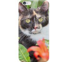 I am Peppy :) iPhone Case/Skin