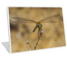 Dragonfly 3 Laptop Skin