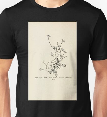 Southern wild flowers and trees together with shrubs vines Alice Lounsberry 1901 156 Thyme Leaved Bluets Unisex T-Shirt
