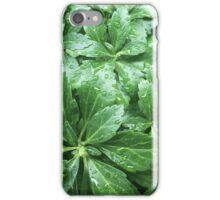 Closeup Leaves iPhone Case/Skin