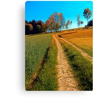 Hiking trail following the trees Canvas Print